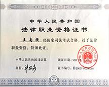 王南顺律师执业证书